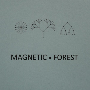 drewes_magnetic forest